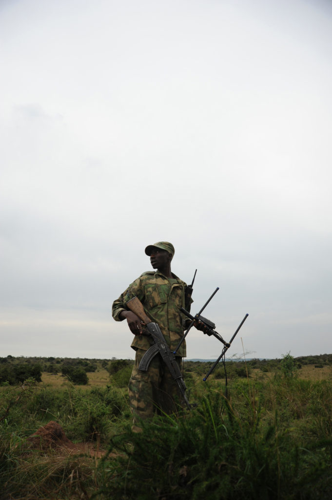 akagera national park warden holding a radio device in the air to try and pick up signal of tracking device on lions