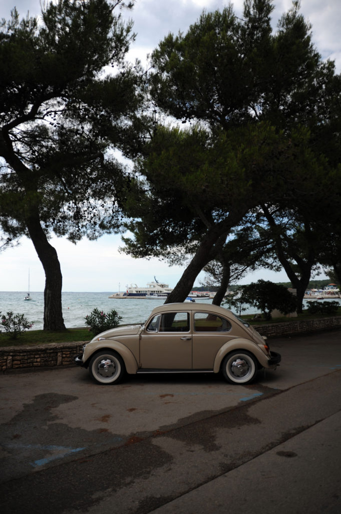 brown vw beetle parked under trees next to the sea