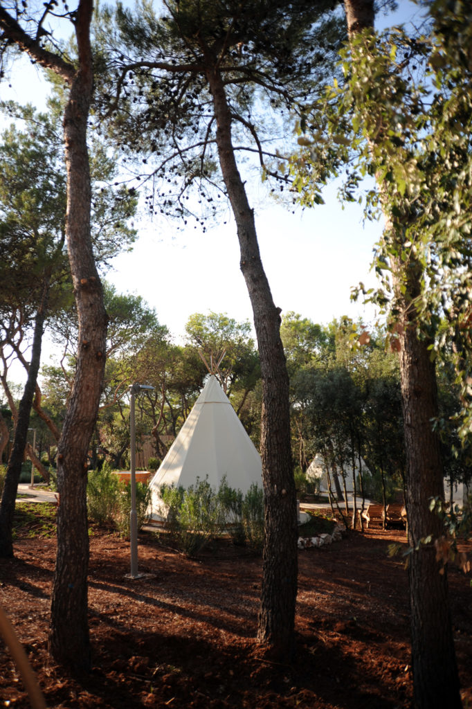 teepee in the park through some trees